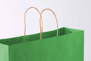 Green paper bag with grey back round