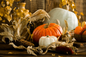 Pumpkins set up in a festive holiday fashion
