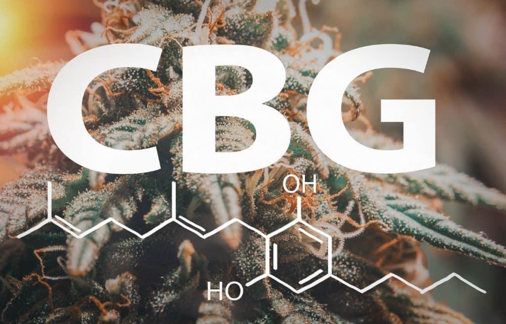 How Does CBG work?