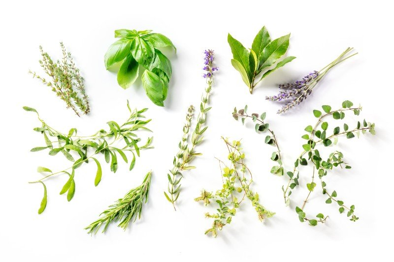 Herbs to mix with weed